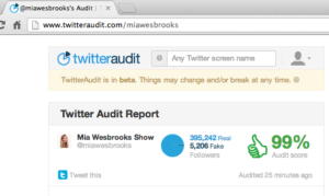 miawesbrooks-twitter-audit-check