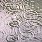 The Cloud's Ripple Effect